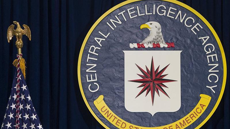 WikiLeaks'ten yeni CIA belgeleri sızıntısı: Çekirge