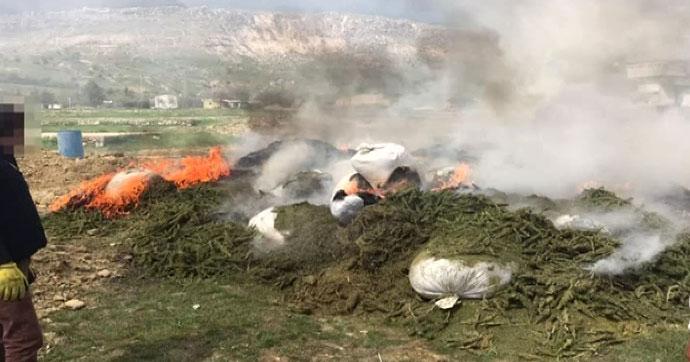 Terör örgütü PKK'nın uyuşturucusu imha edildi
