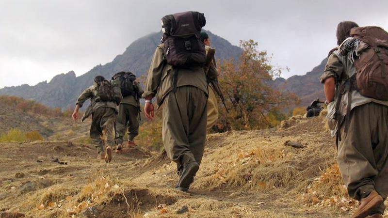 YPG'nin hezimeti Kandil'i karıştırdı!